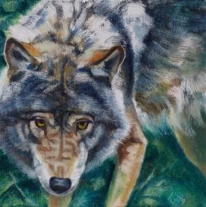 Wolf portrait, oil on canvas, 21cm x 21cm
