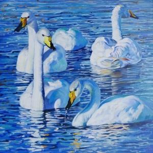 PGMP 5 swans