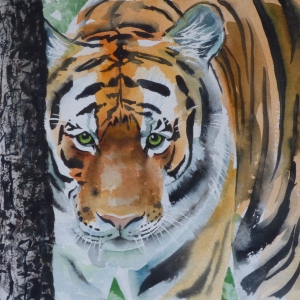 Tiger Portrait, watercolour and mixed media in a 52 x 52cm frame.